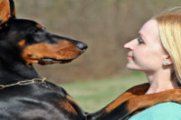 Man's Best Friend… And Counselor